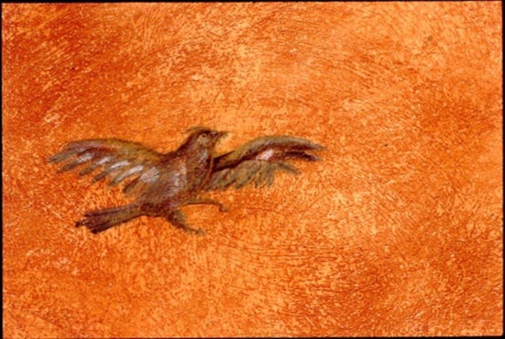 Zoom sur l'oiseau. Technique de fresque